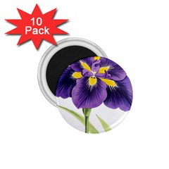 Lily Flower Plant Blossom Bloom 1 75  Magnets (10 Pack)  by Nexatart