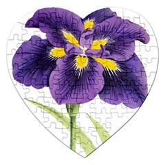 Lily Flower Plant Blossom Bloom Jigsaw Puzzle (heart) by Nexatart