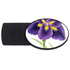 Lily Flower Plant Blossom Bloom Usb Flash Drive Oval (4 Gb) by Nexatart