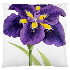 Lily Flower Plant Blossom Bloom Large Cushion Case (two Sides) by Nexatart