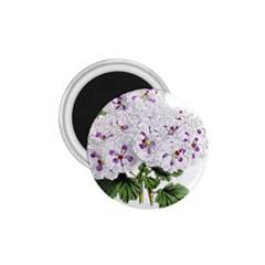 Flower Plant Blossom Bloom Vintage 1 75  Magnets by Nexatart
