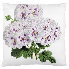 Flower Plant Blossom Bloom Vintage Large Flano Cushion Case (one Side) by Nexatart