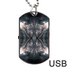 Storm Nature Clouds Landscape Tree Dog Tag Usb Flash (two Sides) by Nexatart