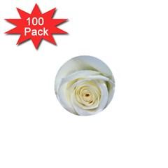 Flower White Rose Lying 1  Mini Buttons (100 Pack)  by Nexatart