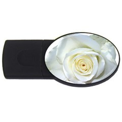 Flower White Rose Lying Usb Flash Drive Oval (4 Gb) by Nexatart