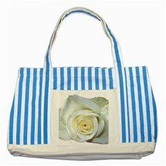 Flower White Rose Lying Striped Blue Tote Bag by Nexatart