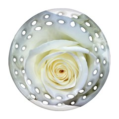 Flower White Rose Lying Round Filigree Ornament (two Sides)