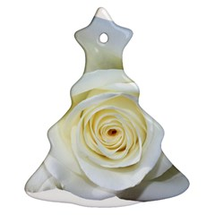 Flower White Rose Lying Christmas Tree Ornament (two Sides) by Nexatart