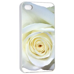 Flower White Rose Lying Apple Iphone 4/4s Seamless Case (white) by Nexatart