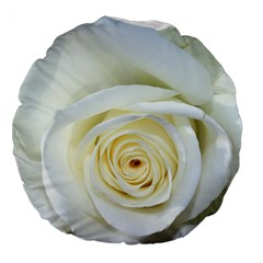 Flower White Rose Lying Large 18  Premium Round Cushions by Nexatart