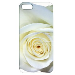 Flower White Rose Lying Apple Iphone 5 Hardshell Case With Stand by Nexatart