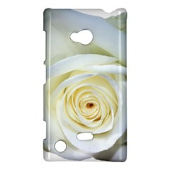 Flower White Rose Lying Nokia Lumia 720 by Nexatart