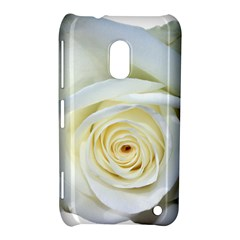 Flower White Rose Lying Nokia Lumia 620 by Nexatart