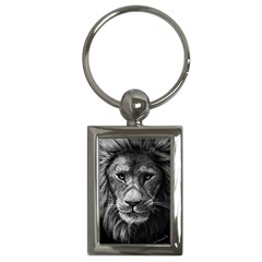 My Lion Sketch Key Chains (rectangle)  by 1871930