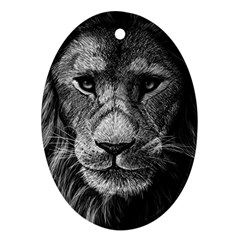 My Lion Sketch Oval Ornament (two Sides)