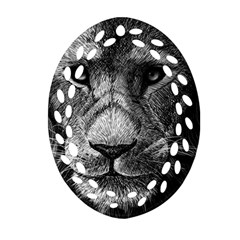 My Lion Sketch Ornament (oval Filigree) by 1871930