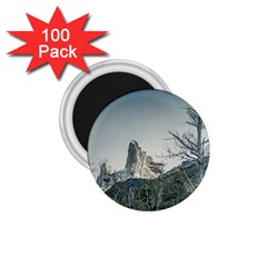 Fitz Roy Mountain, El Chalten Patagonia   Argentina 1 75  Magnets (100 Pack)  by dflcprints