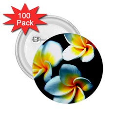 Flowers Black White Bunch Floral 2 25  Buttons (100 Pack)  by Nexatart