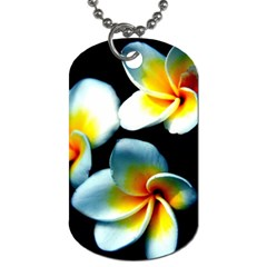 Flowers Black White Bunch Floral Dog Tag (two Sides) by Nexatart