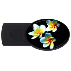 Flowers Black White Bunch Floral Usb Flash Drive Oval (4 Gb)