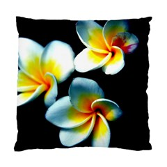 Flowers Black White Bunch Floral Standard Cushion Case (two Sides) by Nexatart