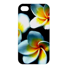 Flowers Black White Bunch Floral Apple Iphone 4/4s Premium Hardshell Case by Nexatart