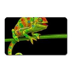 Chameleons Magnet (rectangular) by Valentinaart