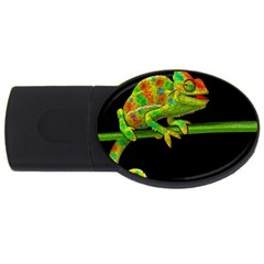 Chameleons Usb Flash Drive Oval (4 Gb) by Valentinaart