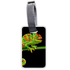 Chameleons Luggage Tags (one Side)  by Valentinaart