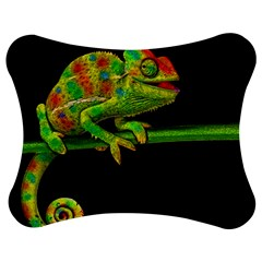 Chameleons Jigsaw Puzzle Photo Stand (bow) by Valentinaart
