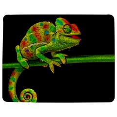 Chameleons Jigsaw Puzzle Photo Stand (rectangular) by Valentinaart