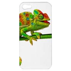 Chameleons Apple Iphone 5 Hardshell Case by Valentinaart