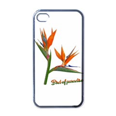 Bird Of Paradise Apple Iphone 4 Case (black) by Valentinaart