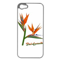 Bird Of Paradise Apple Iphone 5 Case (silver) by Valentinaart