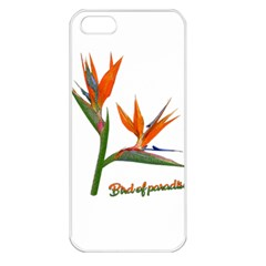 Bird Of Paradise Apple Iphone 5 Seamless Case (white) by Valentinaart