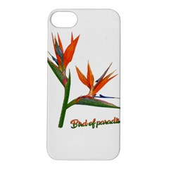 Bird Of Paradise Apple Iphone 5s/ Se Hardshell Case by Valentinaart