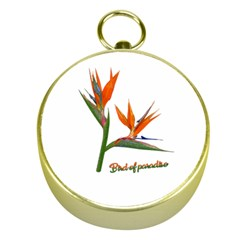 Bird Of Paradise Gold Compasses by Valentinaart