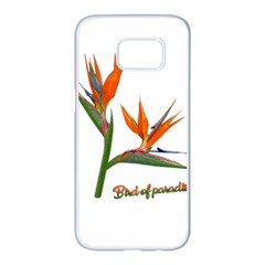 Bird Of Paradise Samsung Galaxy S7 Edge White Seamless Case by Valentinaart