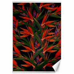 Bird Of Paradise Canvas 20  X 30   by Valentinaart