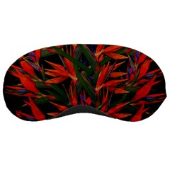 Bird Of Paradise Sleeping Masks by Valentinaart