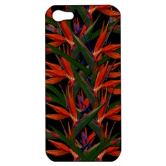 Bird Of Paradise Apple Iphone 5 Hardshell Case by Valentinaart