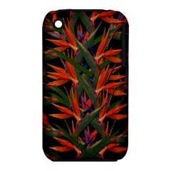 Bird Of Paradise Iphone 3s/3gs by Valentinaart