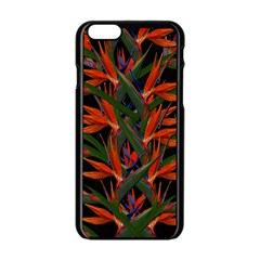 Bird Of Paradise Apple Iphone 6/6s Black Enamel Case by Valentinaart