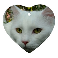 Maine Coon 4 Heart Ornament (Two Sides)