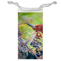 Woodpecker At Forest Pecking Tree, Patagonia, Argentina Jewelry Bag by dflcprints