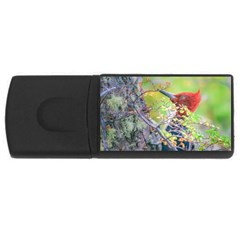Woodpecker At Forest Pecking Tree, Patagonia, Argentina Usb Flash Drive Rectangular (4 Gb) by dflcprints