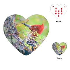 Woodpecker At Forest Pecking Tree, Patagonia, Argentina Playing Cards (heart)  by dflcprints