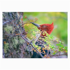 Woodpecker At Forest Pecking Tree, Patagonia, Argentina Large Glasses Cloth (2 Side) by dflcprints