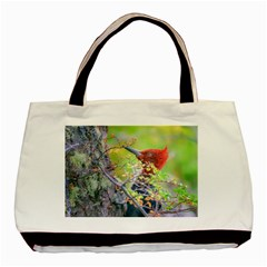 Woodpecker At Forest Pecking Tree, Patagonia, Argentina Basic Tote Bag (two Sides) by dflcprints