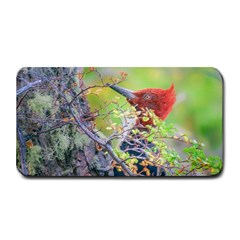 Woodpecker At Forest Pecking Tree, Patagonia, Argentina Medium Bar Mats by dflcprints